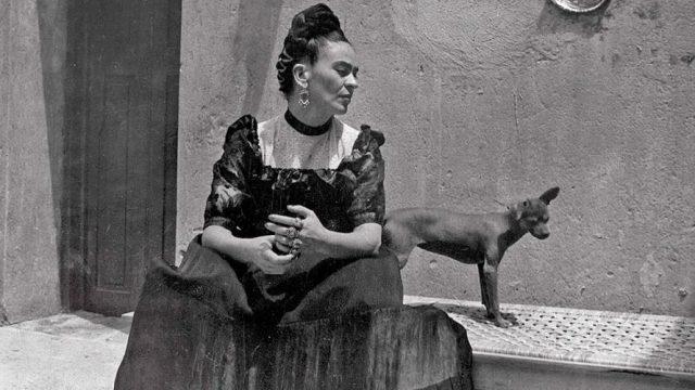 """Exposição: """"Frida Kahlo – as suas fotografias"""" no Porto"""